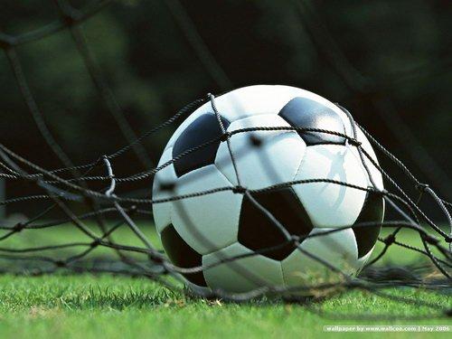 ราคาบอลไหลแรง เว็บนอก  เพื่อการเลือกลงทุนกับเว็บไซต์แทงบอล
